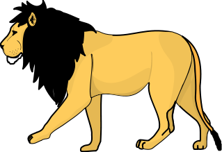 A lion walking to the left