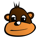 A moneky's face